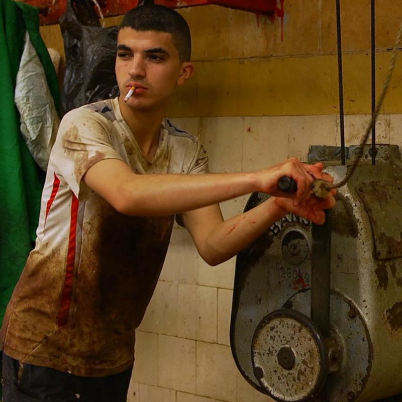 Recomanacions de la mostra de cinema àrab